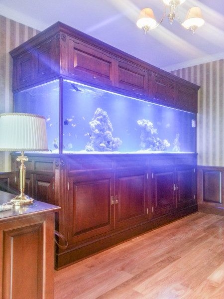 Stylowa obudowa – akwarium morskie
